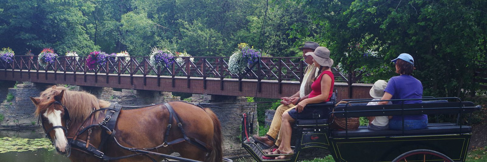 Promenade à cheval en calèche en famille Guémené-Penfao sortie intergénérationnelle Bretagne Sud Loire Océan 44 passerelle du don