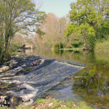 Rivière - cascades du Don Guémené-Penfao - pêche - sortie nature