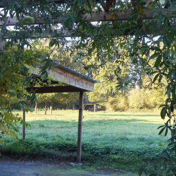 Prairie des chevaux Gîte Guémené-Penfao 44 Pays de Redon