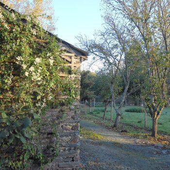 Campagne arbres fruitiers Guémené-Penfao Les Roseaux de Callac